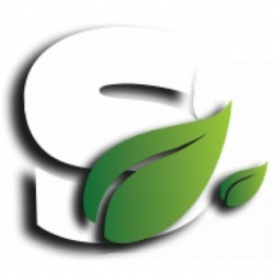 Buddha Seeds Red Dwarf feminized autoflowering 5ks